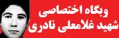 وبگاه اختصاصی شهید غلامعلی نادری بنی